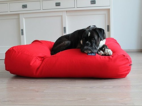 Medium Dog's Companion Canvas Dog Bed Medium Red