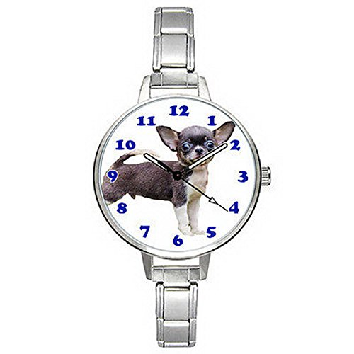 BMTC181 Chihuahua Dog Puppy Stainless Steel Italian Charm Mens Ladies Wrist Watch (Puppy Charm Watch Dog)