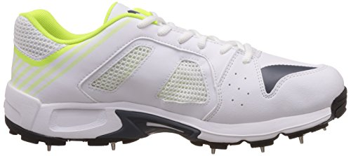 Puma evoSPEED Cricket De Spike Shoe