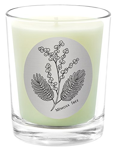 Qualitas Beeswax 6-1/2-Ounce Candle, Mimosa Tree Scented