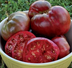 Tomato Seed Pack (Black Krim Tomato Seeds ► ORGANIC HEIRLOOM NON-GMO ◄ Rare Russian Black Krim (PowerGrow Systems Pack of 30+ Seeds))