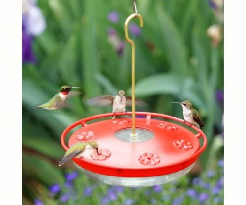 72 Ounce Hummingbird Feeder - 7