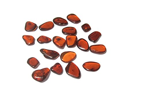 Ian and Valeri Co. Raw Dark Amber Flat Gemstones Very Small Set of 20 -