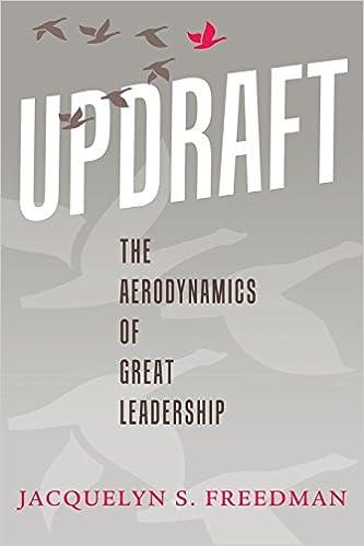 Updraft: The Aerodynamics of Great Leadership Image