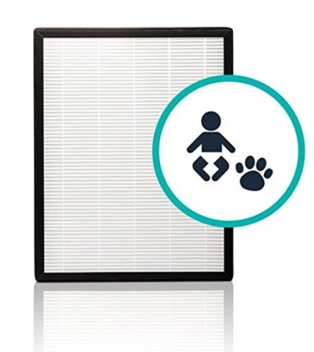 Alen FLEX HEPA-OdorCell Replacement Filter technology to Reduce Allergies & Pet Odors (FL40-MP, 1-Pack)
