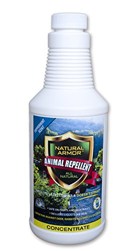 Natural Armor Animal Repellent - Pint - 16 Ounce - Peppermint Scent (Critter Ridder Liquid)