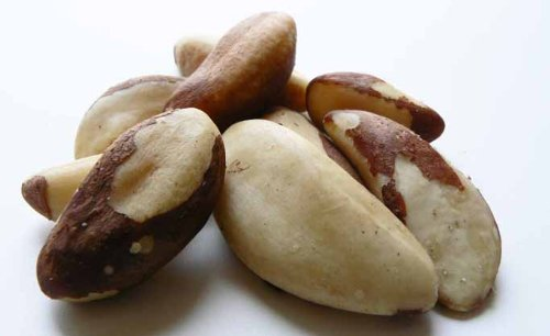 Raw Brazil Nuts (No Shell) 1LB Bag by The Nutty Fruit House