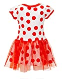 Disney Toddler Girls' Minnie Mouse Tulle