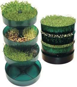 Reproductor de semillas / Dispositivo De Semillas GEO