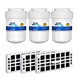 GOLDEN ICEPURE Refrigerator Water Filter,Compatible with GE MWF,SmartWater,FMG-1,Kenmore 469991,GE ODOR FILTER Water and Odor Filter Combo(3-Pack) -  Best Pure