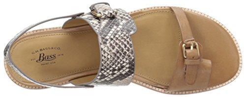 Bass Toe Caramel WoMen Monica M Snake Snake 5 Multi Grey 7 Ring G US H Sandal B58qE5I