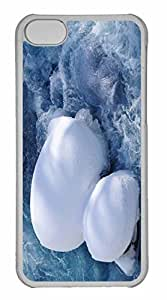 iPhone 5C Case, Personalized Custom Water Flow for iPhone 5C PC Clear Case