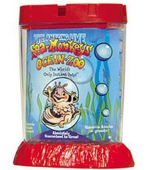 Schylling Sea Monkeys Ocean Zoo Colors May Vary by Schylling ()