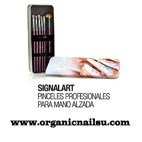 Amazon.com : Pinceles Organic Nails Set 6pc Para One Stroke/mano Alzada : Beauty