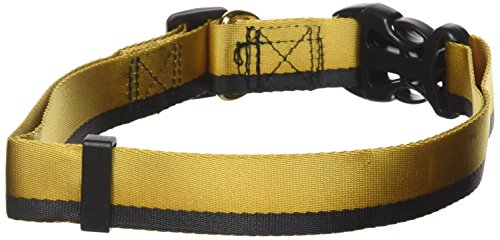 Image of Star Trek Dog Collar Gold XL - Boldly go where no other dog has gone before