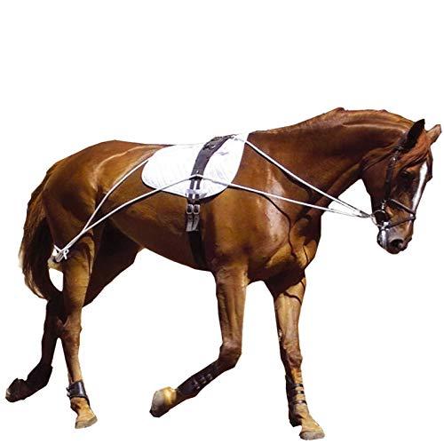 Hunters Saddlery Ultimate Horse Lunging Training Aid System Lunge Equipment (Pony, Black) (Pessoa Pony)