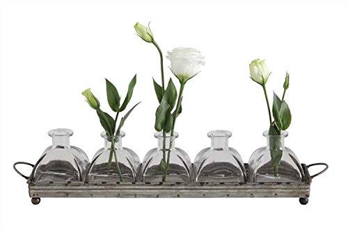 Iron Tray & Five Glass Vase Set - Set Of 2