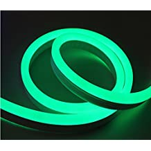 30ft 12VDC Green Light Flex LED Neon Rope Light Indoor Outdoor Holiday Festival Party Decorative Lighting (Green)