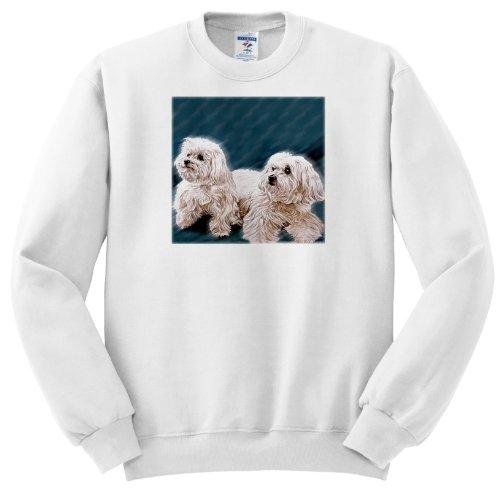 Maltese - Youth SweatShirt Large(14-16)