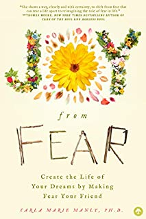 Book Cover: Joy from Fear