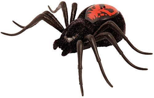 Wild Pets Spider - Creepster ()