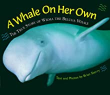 A Whale on Her Own Edition 1.