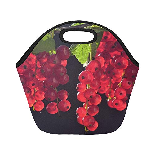 Insulated Neoprene Lunch Bag Currants Red Fruit Fruits Close Up Garden Berries Large Size Reusable Thermal Thick Lunch Tote Bags For Lunch Boxes For Outdoors,work, Office, School