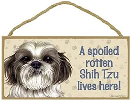 SJT63966 A house is not a home without a Shih Tzu wood sign plaque