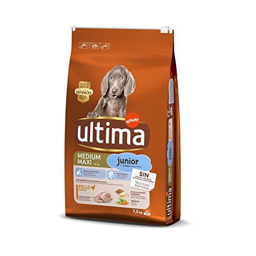 Ultima Pienso para Perros Medium Maxi Junior con Pollo – 7.5 kg
