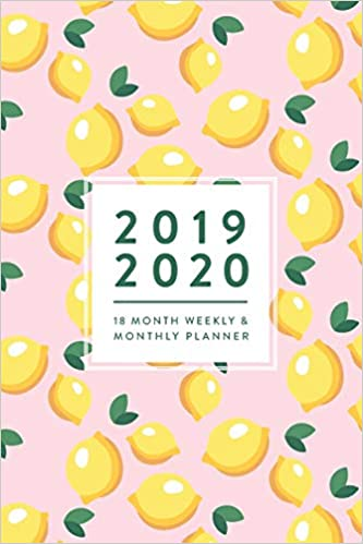 Amazon.com: 2019 2020, 18 Month Weekly & Monthly Planner ...