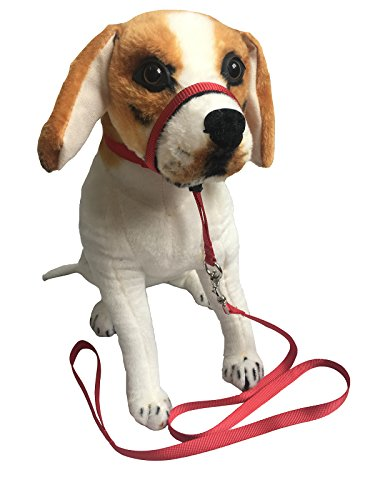Headcollar Halter Painless Gentle Control Training Collars with Leash (M, Red) by Charmsong