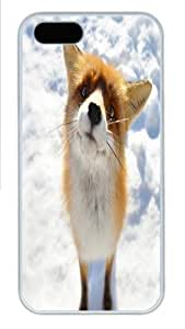 Fox Closeup In Snow Field Custom iPhone 5s/5 Case Cover Polycarbonate White