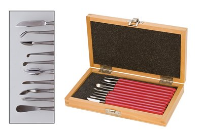Deluxe 10 pc. Carver Set w/ Box - CVR-220.00