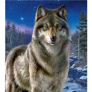 Clementoni Night Watch 500 Piece Wolf Jigsaw Puzzle