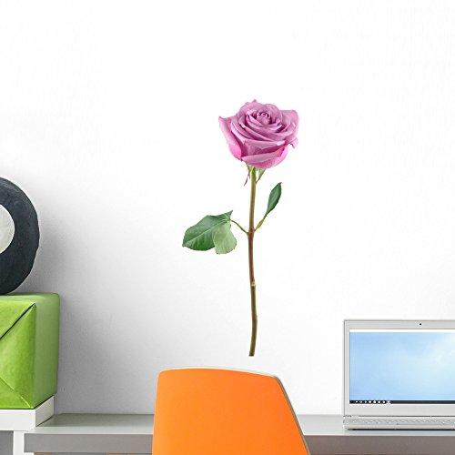 Purple Rose Florist (Wallmonkeys Purple Rose Wall Decal Peel and Stick Graphic WM39091 (18 in H x 12 in W))