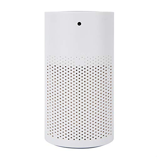EBTOOLS Small Air Purifier, USB PM2.5 Odor Removal Quiet Air Filter Purifier Cleaner, Pet Smell and Smoke Odor Eliminator Negative Ion Air Cleaner for Home/Office/Car