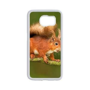 Cool Squirrel Hard Plastic Phone Case for samsung galaxy s6 Shell Phone ZDSVEN(TM)