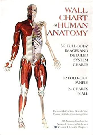 Amazon.com: Wall Chart of Human Anatomy (9780971007000): Thomas ...