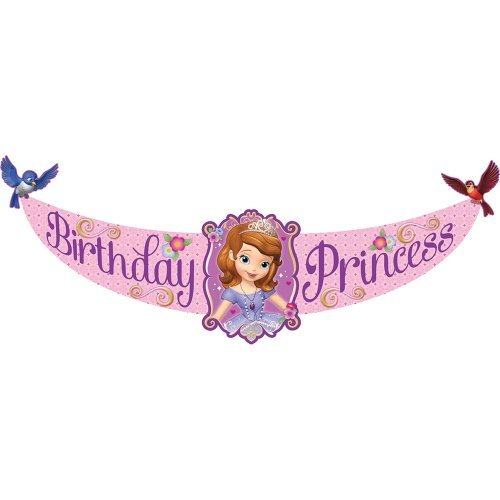 Sofia the First Birthday Banner Birthday and Holiday Party Supplies]()