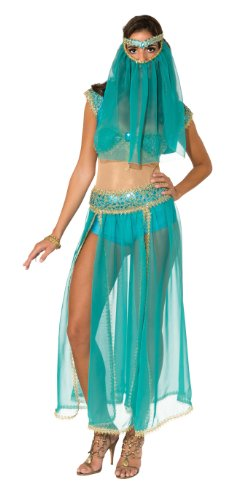 Rubie's Costume Deluxe Harem Princess With Bodysuit Costume