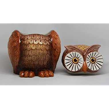 8 Inch Big Eyed Owl Shaped Ceramic Cookie Jar Statue Figurine