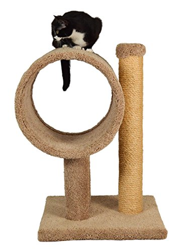 Molly and Friends A Tunnel On Two 12' Poles with A Sisaled 31' Scratching Post On A 21' x 18' Base,...