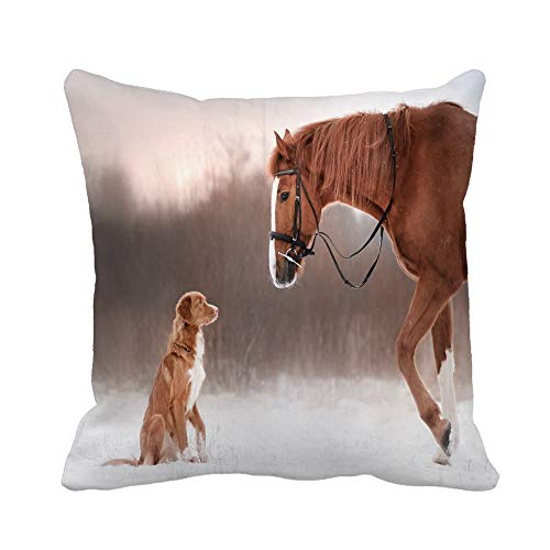 Awowee Throw Pillow Cover Red Horse and Dog Walking in The Field Winter Nova Scotia Duck Tolling Retriever 20x20 Inches Pillowcase Home Decorative Square Pillow Case Cushion Cover