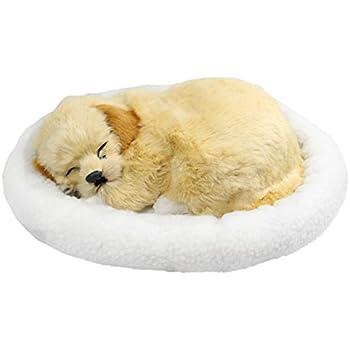 Amazon.com: Perfect Petzzz Golden Retriever Plush: Toys