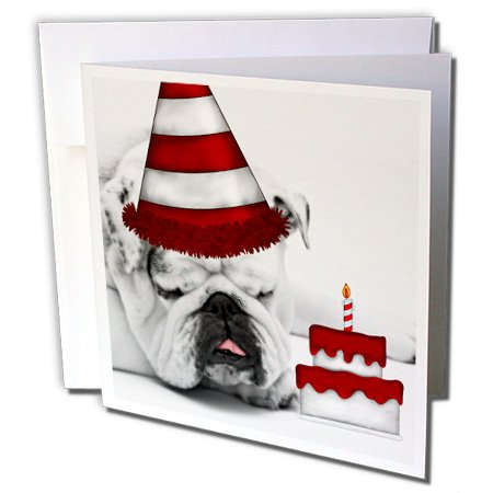 Birthday Bulldog (3dRose Cute Bulldog with a Birthday Hat and Birthday Cake. - Greeting Cards, 6 x 6 inches, set of 6 (gc_173243_1))