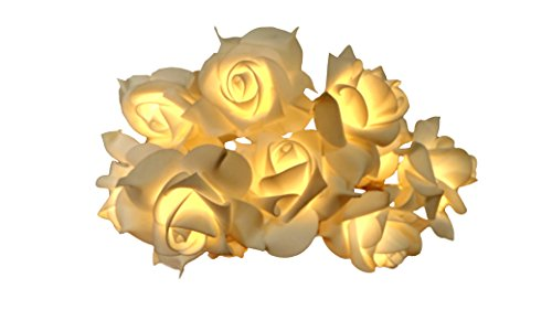 Hzenya Fairy Light 7cm large White Rose string light garland,10 Warm White LEDs, 5.8 feet,Battery Operated (white) (Light Fairy Bulbs)