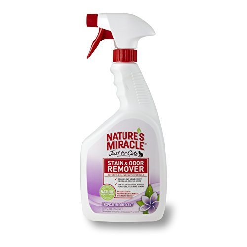 Natures Miracle Stain Remover Tropical