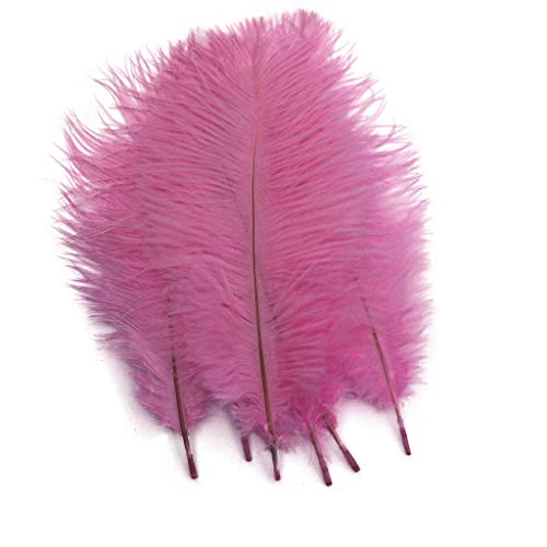 Pink Ostrich Feathers - Shekyeon Pink 10-12inch 25-30cm Ostrich Feather Home Decoration DIY Craft Pack of 10