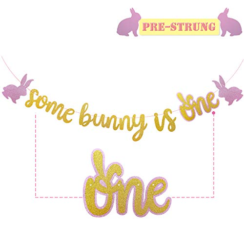 Birthday Bunny - Yaaaaasss! Some Bunny is One Banner, Easter Birthday Decorations, Gold & Pink Easter Bunny Garland, Girls Spring First Birthday Party Decorations