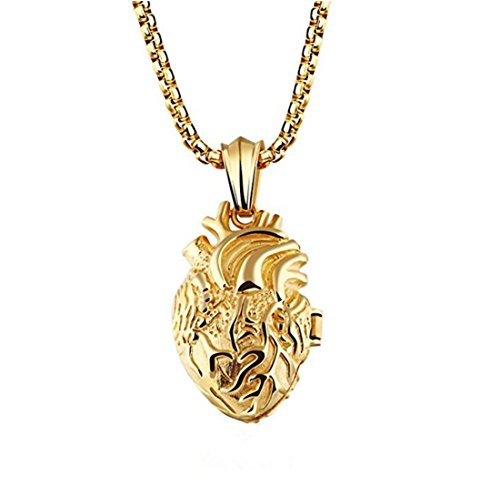 LBFEEL Stainless Steel Anatomical Organ Heart Pendant Necklace for Men With a Gift Box (Fox Yellow Pendant)